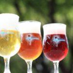 【通販の美味しいお酒】ベルギー産フルーツビールおすすめ8選