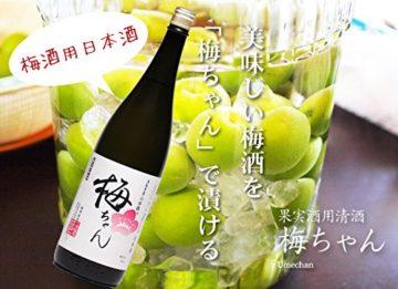 おすすめ梅酒用日本酒7
