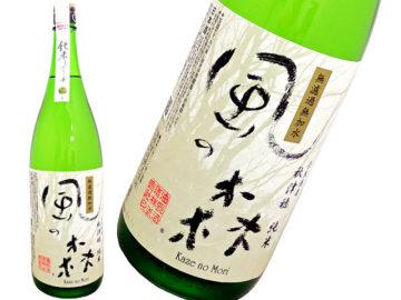 おすすめ生酒5